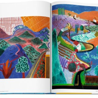 dAVID_HOCKNEY_A_BIGGER_BOOK_5.jpg.2000x2000_q85