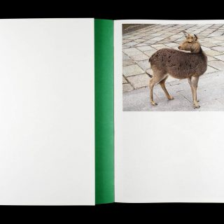 erik_van_der_weijde_this_is_not_my_book_02_0
